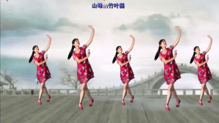 点击观看《阿采广场舞 北江美 新手入门32步广场舞手把手教学 优雅好看的广场舞》