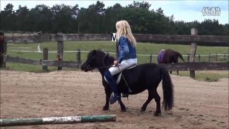 视频骑美女美女视频一小马图片
