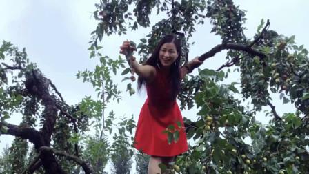 点击观看《青青世界广场舞红枣树 2019精选舞蹈视频》