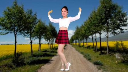 走着走着花就开了广场舞  京京跳健身舞视频