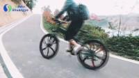 Magnesium alloy wheel folding mountain electric bike