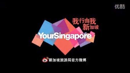 新加坡大赛车季2013PV finial