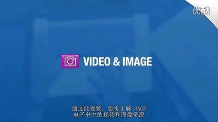中文版--如何使用SAGE电子书的视频和图像资源