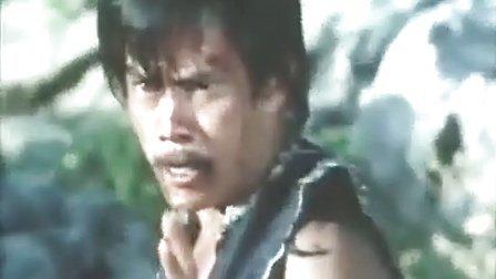 [香港武打片]大地双英(国语)