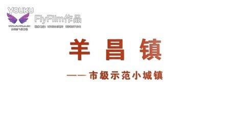 贵阳市乌当区小城镇建设规划片_羊昌镇