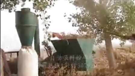 秸秆粉碎好设备圣鸿牌自动进料秸秆花生秧粉碎机视频高清