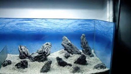 青龙石 云雾石造景 水族箱造景 三湖鱼缸 石景造景