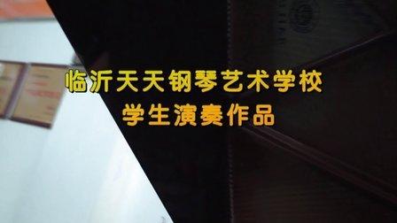 临沂天天钢琴艺术学校学生演奏作品合集(超清视频)