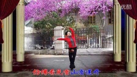 藏舞:八千八(正面)