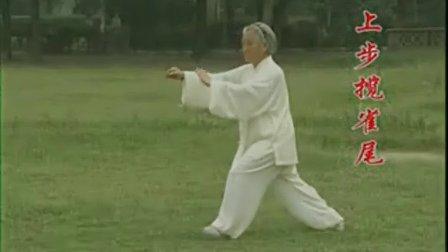 85式传统 杨式太极拳 第26-33式教学