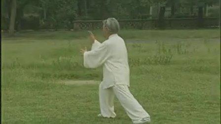 85式传统 杨式太极拳 第47-58式教学