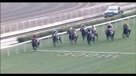 环球赛马第14期-劲赛圈点-香港赛皮亚士纪念挑战杯