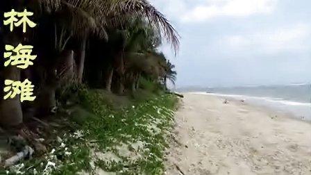 海南自驾游(3)东郊椰林