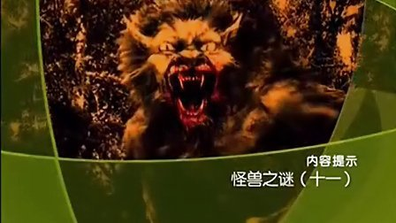 大'真'探 怪兽之谜(十一)