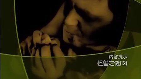 大'真'探 怪兽之谜(十二)【完结】