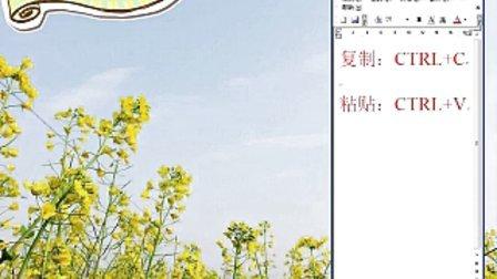 基础手动YY字幕,word字幕