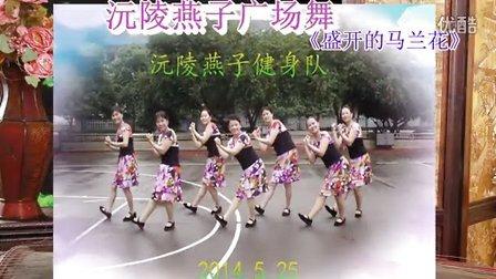 沅陵燕子广场舞《盛开的马兰花》(附背面演示)