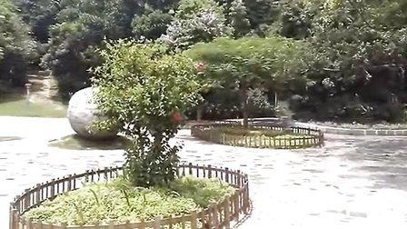 紫云公园-多功能城市综合性公园(福建漳州市龙海市)