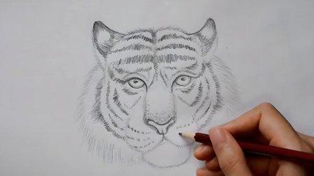铅笔画老虎素描的过程