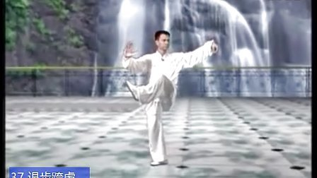 陈思坦侧面演练42式太极拳慢动作【标准方位】 兰秀制作