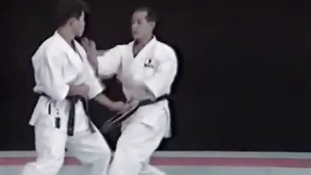 西村誠二 競技組手 技法 - 突技 (Tsuki-waza)