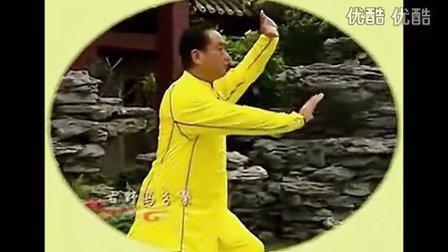 赵幼斌大师演练段位制杨式太极拳五段单练套路
