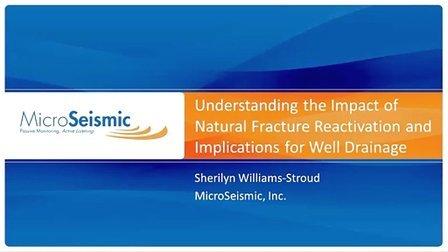 了解天然裂缝重激活的影响-MSI