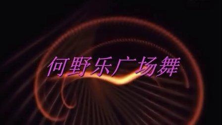 何野乐广场舞《站在高高的山岗上》学王梅教学舞蹈