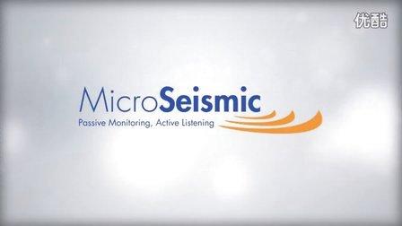 美国MicroSeismic公司实时微地震监测技术