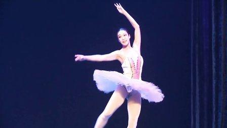 高雅艺术进校园-辽宁芭蕾舞蹈团来我校演出