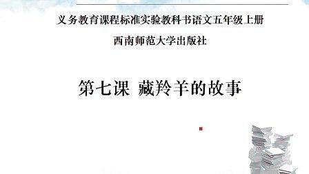 西南师范大学出版社小学语文五年级上册第7课藏羚羊的故事
