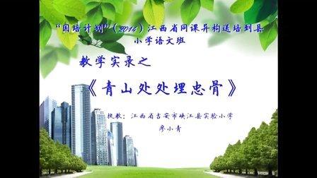 《青山处处埋忠骨》峡江县实验小学廖小青20141205