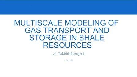 页岩气体运移和贮存的多尺度模拟