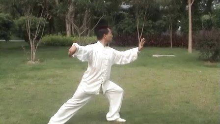 李国强杨式太极拳85式