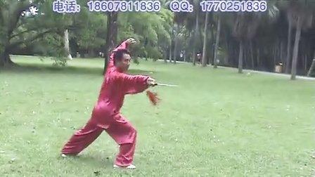 李国强武当太极剑63式全套背面演示