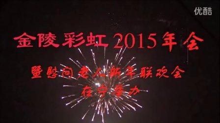 金陵彩虹2015年会