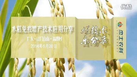 【水稻】免疫增产技术应用分享