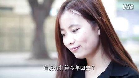 恋情救兵2 : 智取美女回家过年