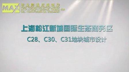上海松江新城国际生态商务区