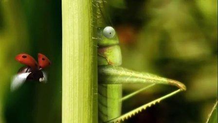 [昆虫总动员]蚂蚱的恶作剧