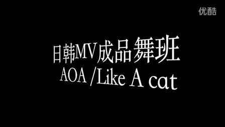 【US Kpop】大连US街舞小黑导师 AOA Like A Cat  练习室 大连韩舞成品舞爵士舞
