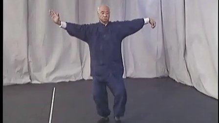 吳式太極108方架   吳大新(吳式太極拳創始人吳鑑泉宗師的孫子)