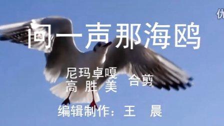 《问一声那海鸥 》 尼玛卓嘎在星光大道的演唱与原唱高胜美合并