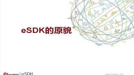 eSDK IVS服务端如何进行二次开发-eSDK的原貌