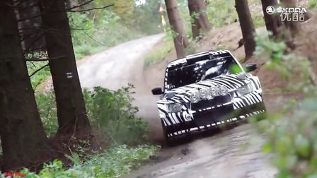 2016 斯柯达强悍改装拉力赛赛车 Skoda Fabia R5