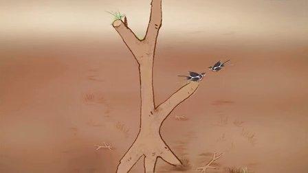 汉字演变—木