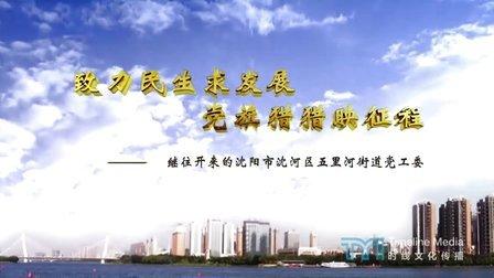 【时线文化传播】沈阳市沈河区五里河街道办事处-机关党建宣传片