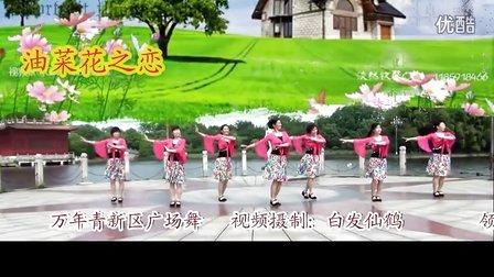 万年青香云乐园广场舞《油菜花之恋》