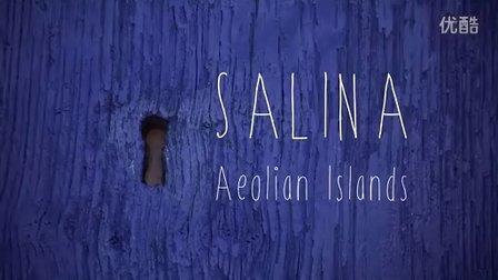 意大利西西里伊奥利亚群岛萨利纳岛
