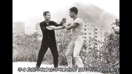 中国功夫史第二季13:武术演员的动作门派(上)